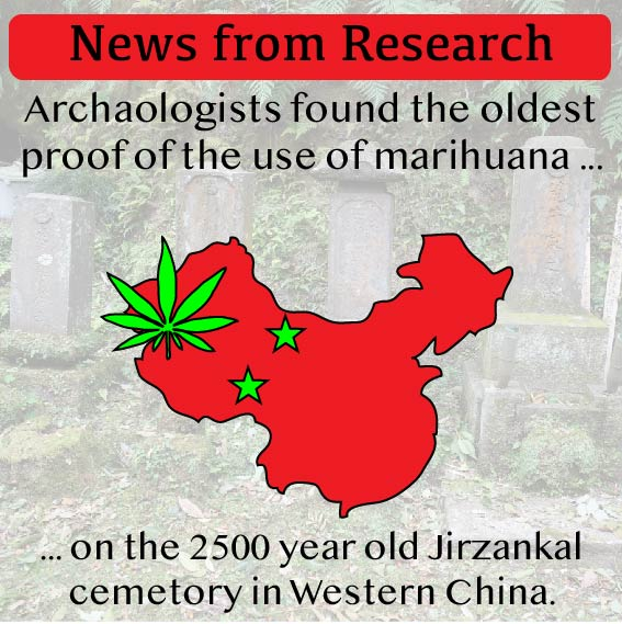 ews from Research - cannabis in China